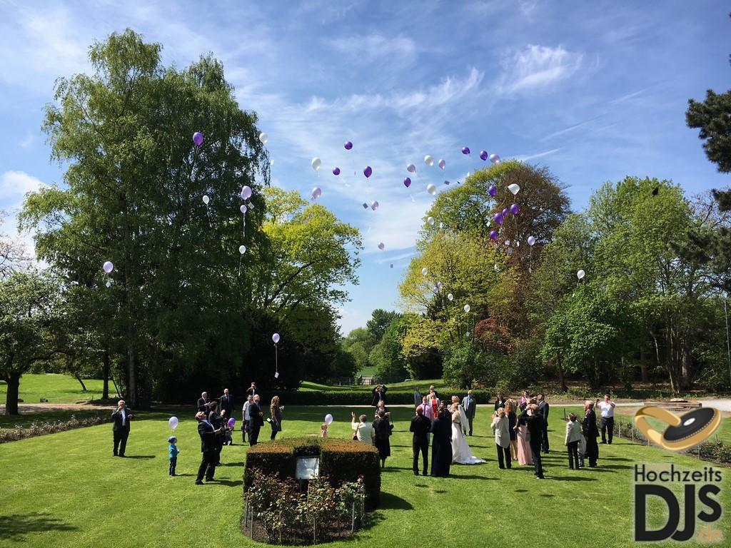 Herzen Ballons im Park