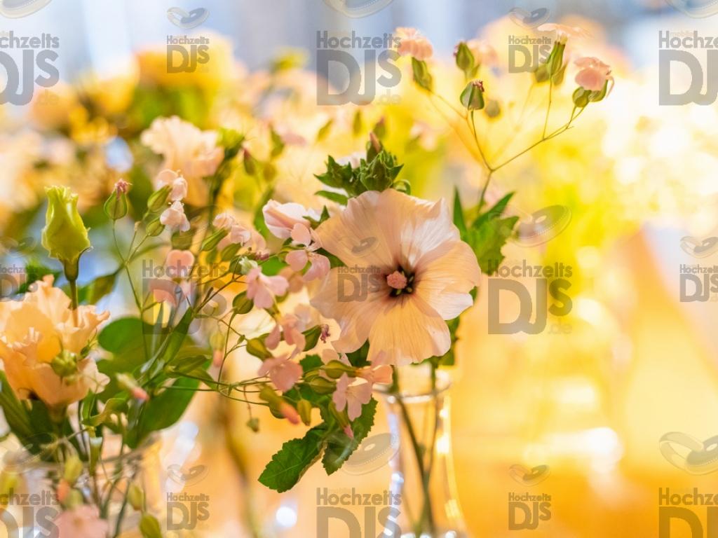 Schloss Diersfordt Blumen