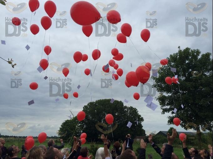 Luftballons im Niemeshof